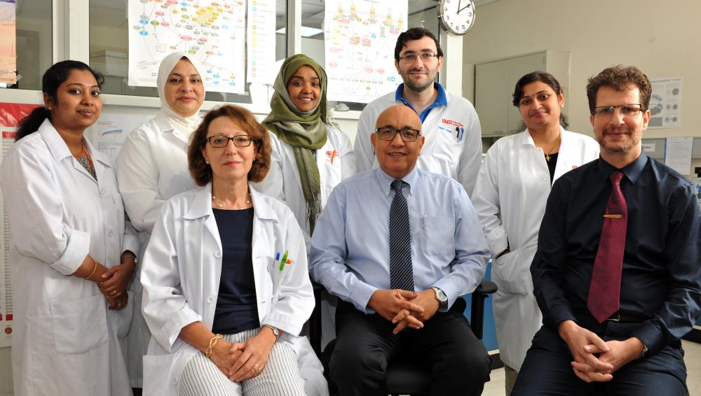 Researchers at United Arab Emirates University (UAEU) have taken their groundbreaking studies into the role of honey in battling cancer a step further. — Courtesy photo