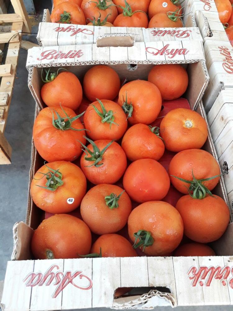 Imported tomato from Jordan. — SG photo by Irfan Mohammed