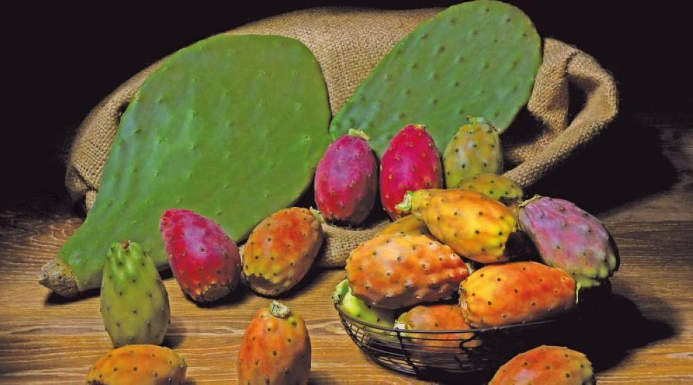 Prickly pear cactus is