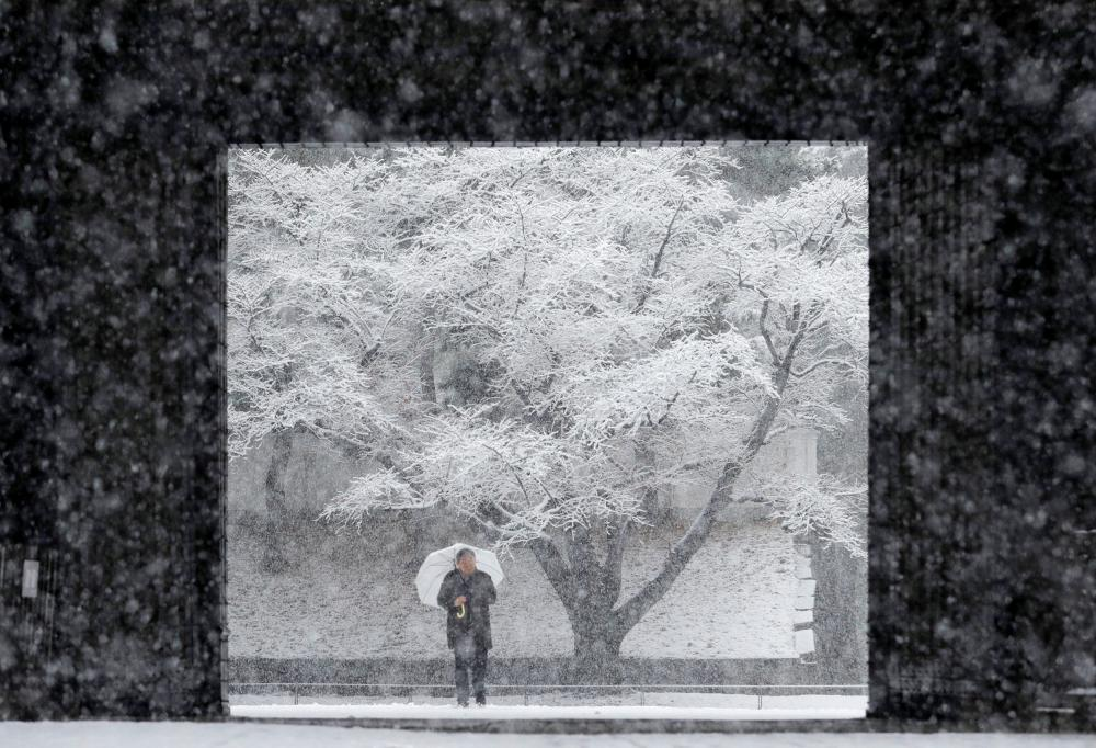 Tokyo gets first 'heavy snow' in four years