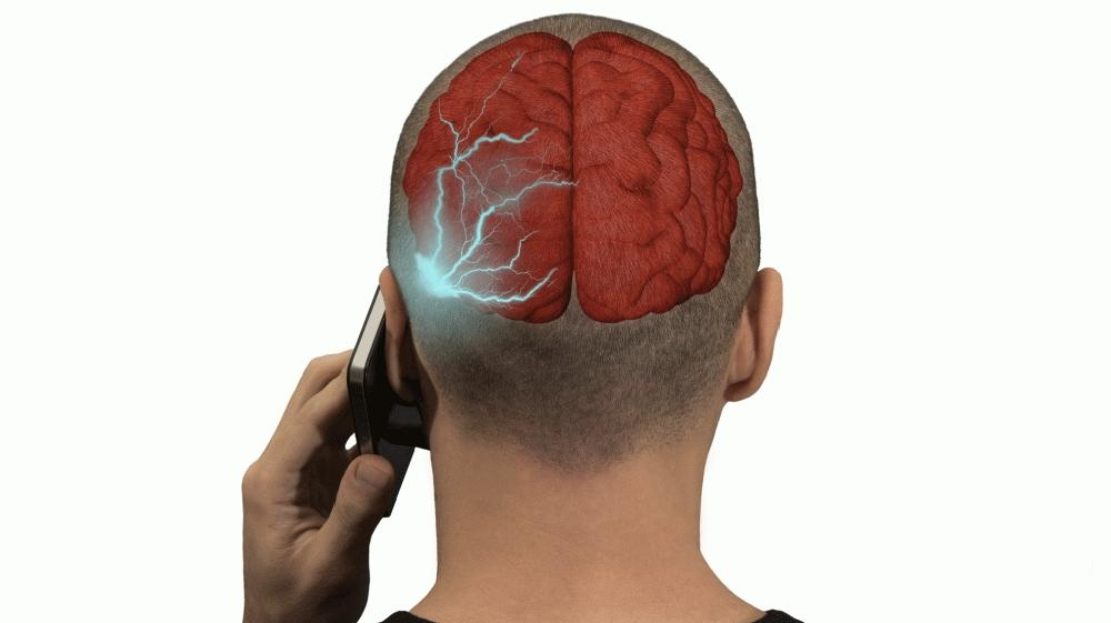 High Levels Of Cellphone Radiation Linked To Tumors In Male Rats