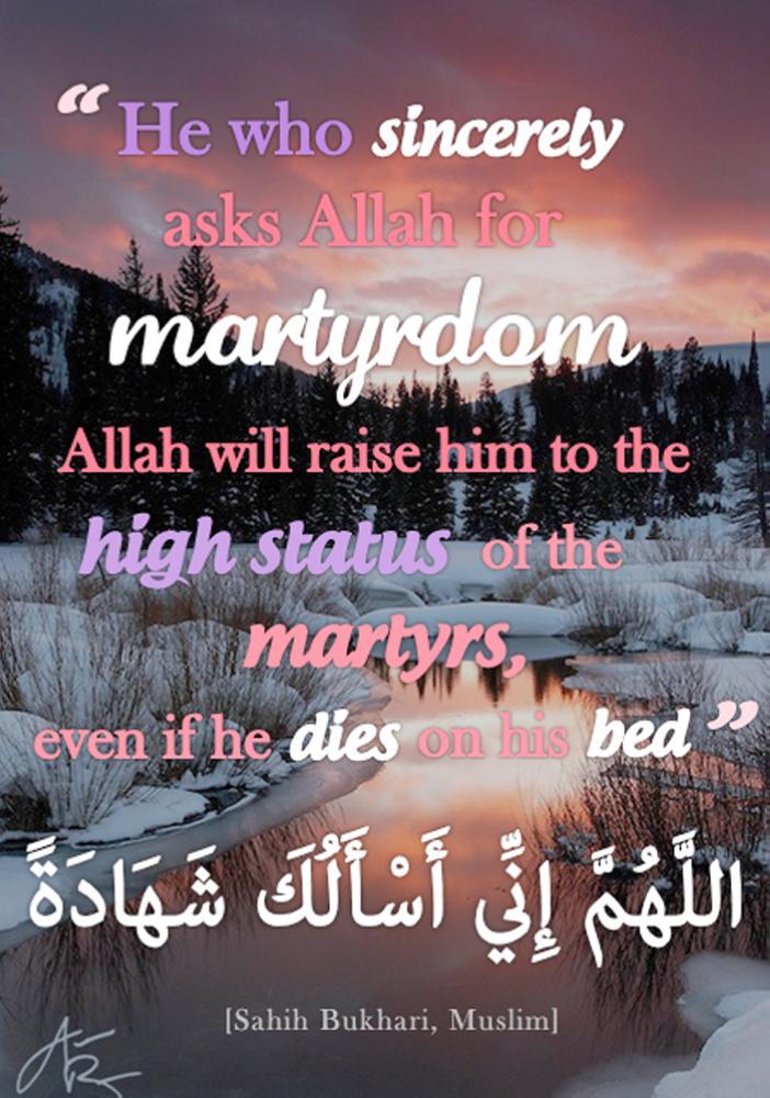 To die a Martyr