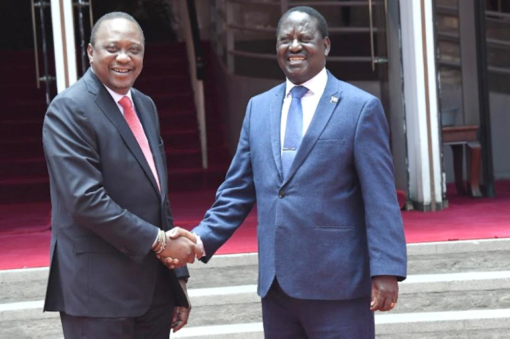 Raila speaks after meeting Moi