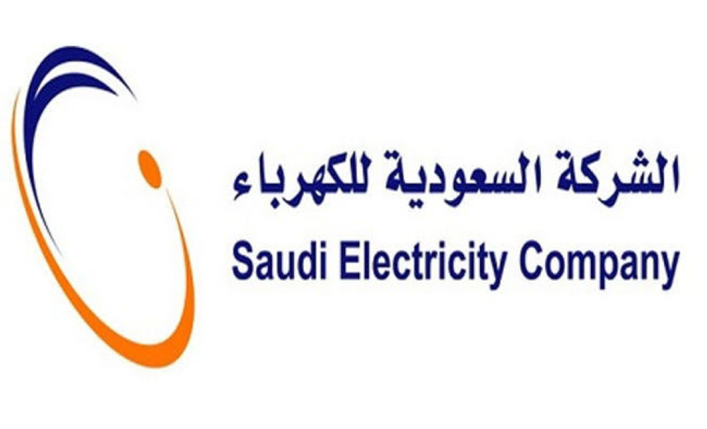 SEC starts issuing electricity bills