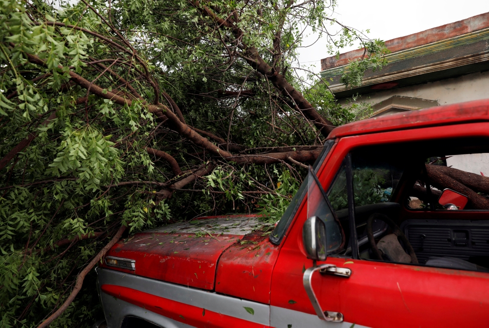 A tree that fell on a car is pictured along a street in Escuinapa, near the southern tip of Sinaloa state after Hurricane Willa hit, Mexico, on Wednesday. — Reuters