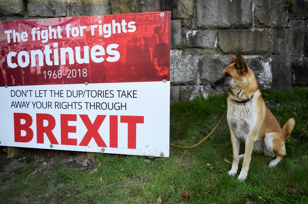 A dog sits next to an anti-Brexit sign near the border with Ireland in Newry, Northern Ireland. — Reuters