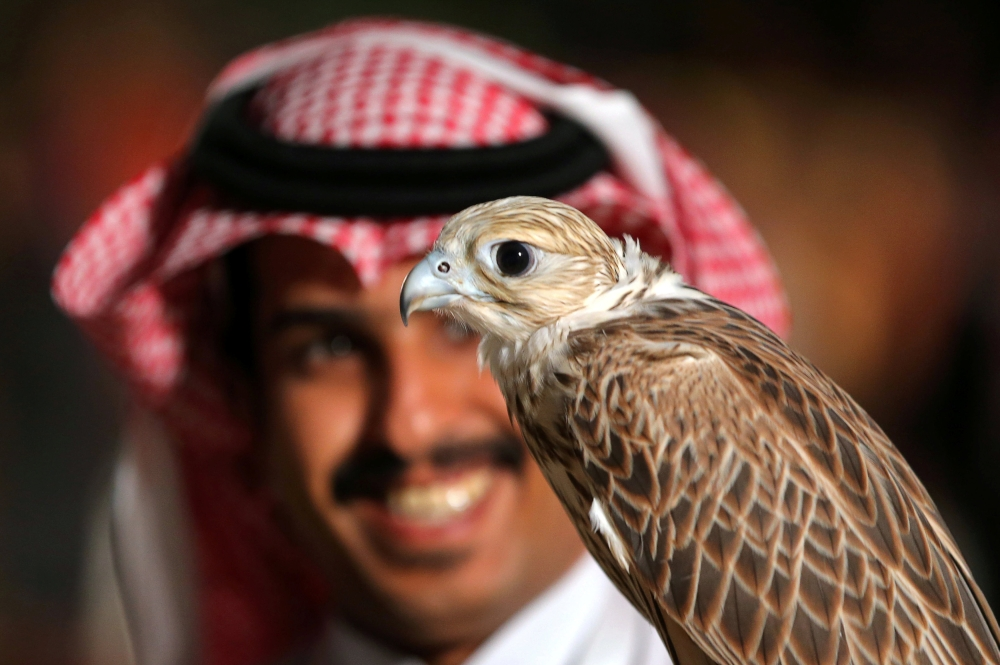 A visitor poses with a falcon at the first Saudi Falcons and Hunting Exhibition in Riyadh, Saudi Arabia, December 5, 2018. REUTERS