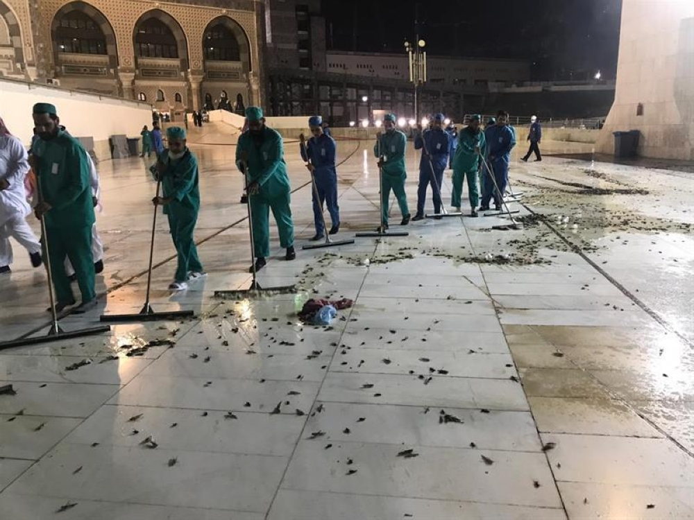 Swarms of black grasshoppers have been appearing inside the Grand Mosque and its plazas over the past couple of days.