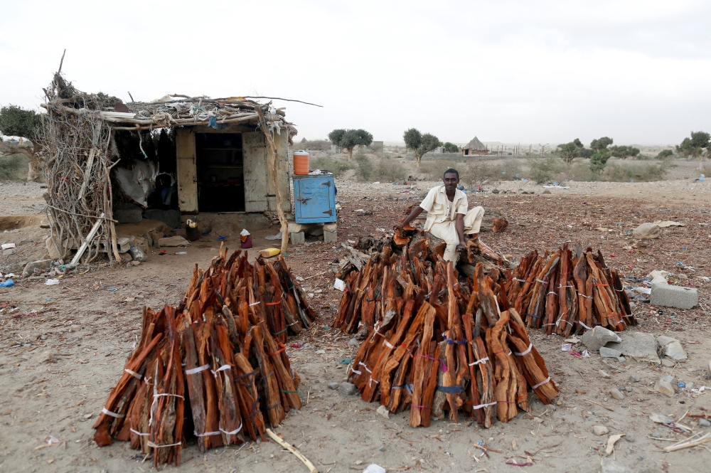A firewood vendor waits for customers on the side of a road to the village of Al-Jaraib, in the northwestern province of Hajjah, Yemen, in this Feb. 18, 2019 file photo. — Reuters
