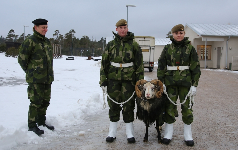 Members of the Swedish Army's Gotland Regiment stand with the unit's mascot on a parade ground near the town of Visby, Gotland, Sweden, in this Feb. 5, 2019 file photo. — AFP