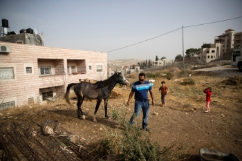 Ismail Obeideh walks with his horse near his home in the Palestinian village of Sur Baher, which sits on either side of the barrier in East Jerusalem and the Israeli-occupied West Bank, on Wednesday. — Reuters