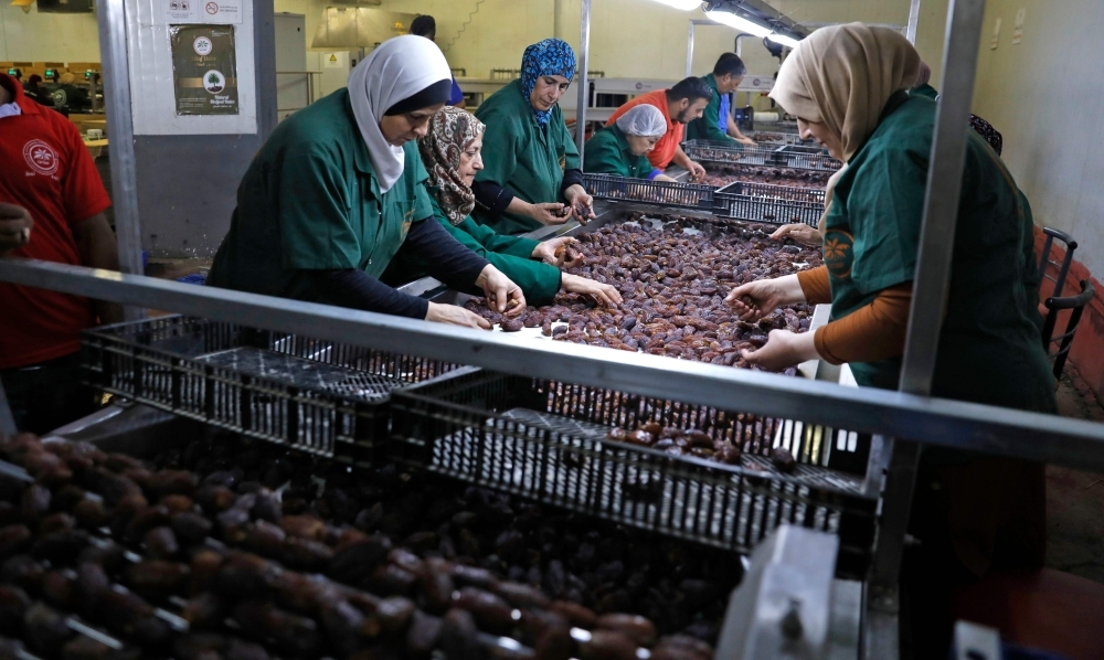 Palestinians work in a date packaging company owned by a fellow Palestinian in the Jordan Valley village of Jiftlik in the Israeli-occupied West Bank on Wednesday. — AFP