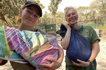 An undated handout photo taken and released by Walkabout Wildlife Park shows volunteers holding wild animals in bags in Calga, north of Sydney. — AFP