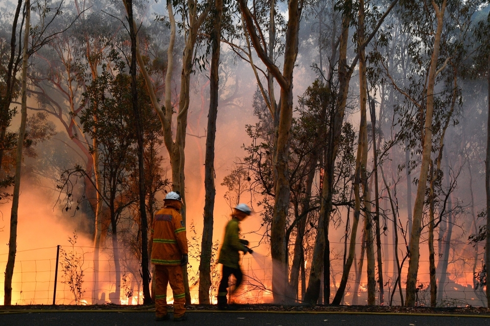 Firefighters conduct back burning measures to secure residential areas from encroaching bushfires at the Mangrove area in Central Coast, some 90-110 kilometers north of Sydney on Saturday. -AFP