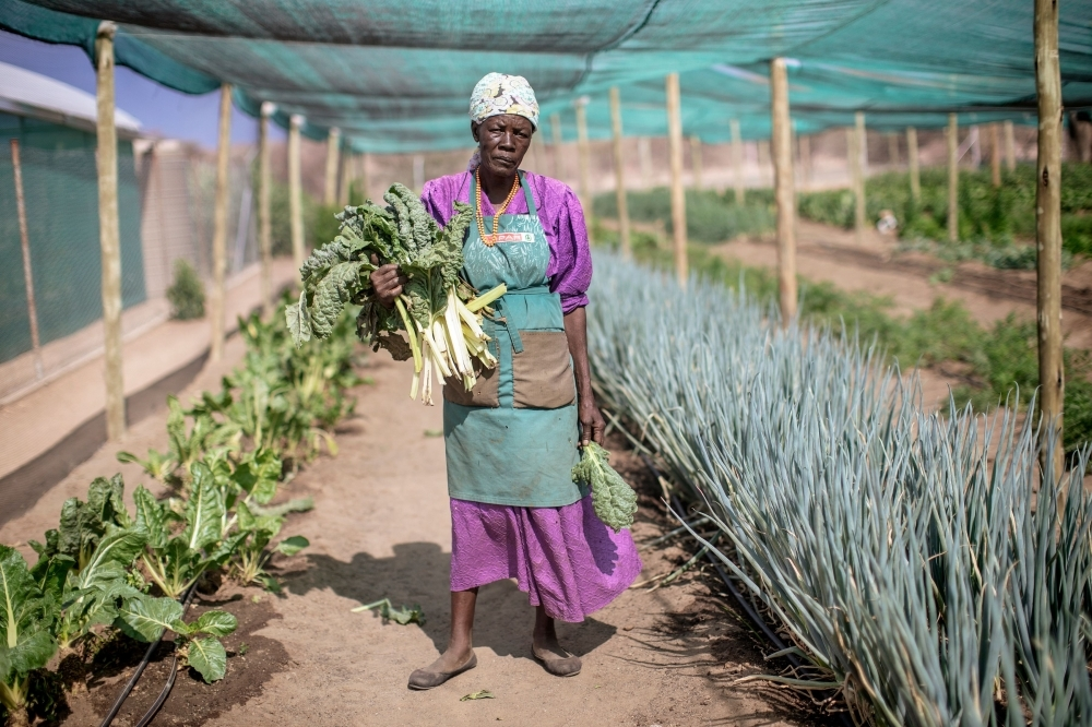 Justina Korases stands in a vegetable garden on a plot part of reclaimed land on November 26, 2019 on the outskirts of Ovitoto settlement in the Okahandja district area, Namibia. -AFP