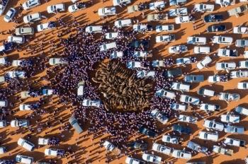 Camel Festival in Saudi Arabia