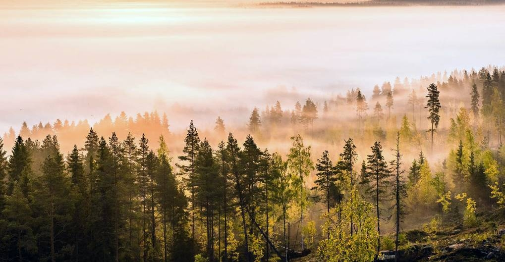 Late September sunrise as seen from Paalijärvi observation tower in Alajärvi, Finland. May 2020, was the warmest on record, UN weather agency WMO has confirmed. — courtesy WMO/Tapio Niemi