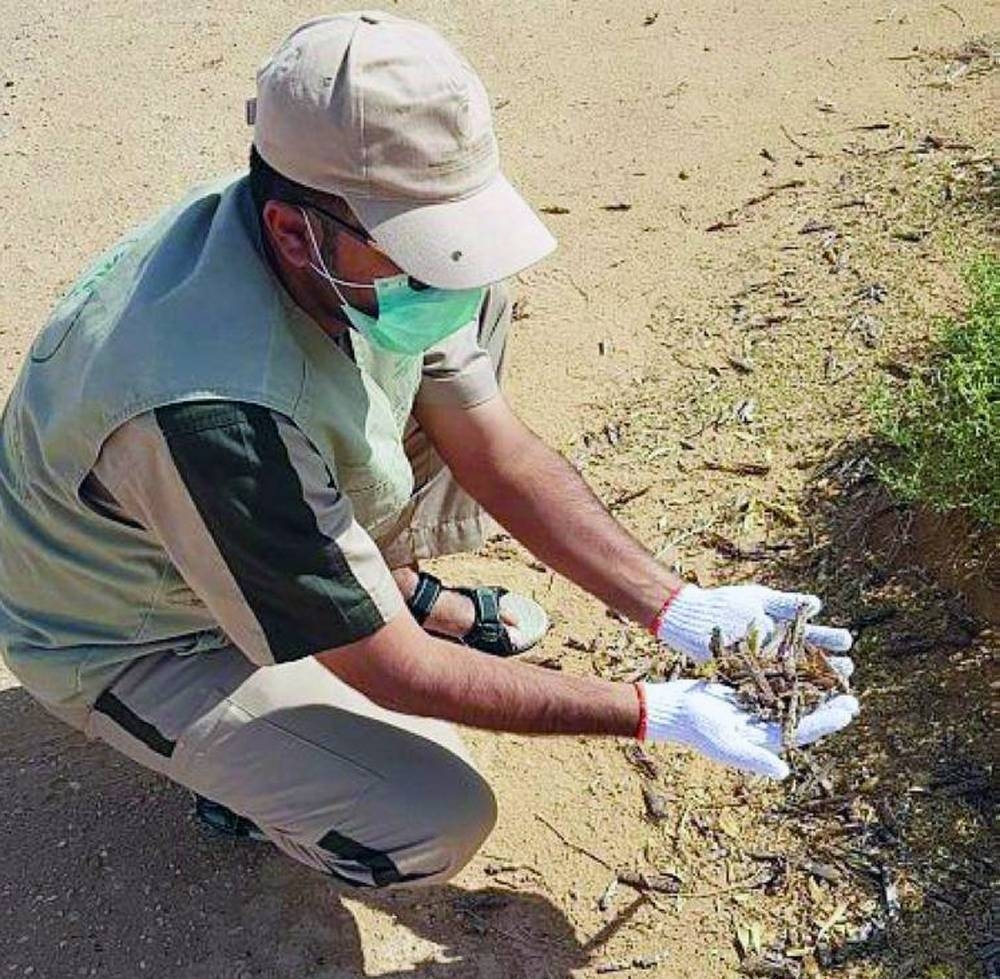 File photo shows the Ministry of Environment, Water and Agriculture field teams seen combating the locust menace.
