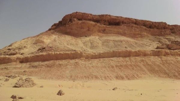 Al-Jahdali revealed that these mountains are semi-deep sediments that are 37 million years old, and these organisms appeared in the geological record about 200 million years ago. These are important tools in determining the geological ages of limestone sedimentary rocks in geological studies, given their concentration and density in marine geological systems of ages.