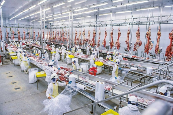 The Saudi Agricultural and Livestock Investment Company (SALIC) fully owned by the Public Investment Fund (PIF) announced the increase of its stake in the Brazilian Meat Company, Minerva Foods, from 25.5% to 33.83%.