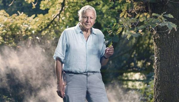 File photo of Sir David Attenborough.