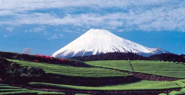 Japan's sacred Mount Fuji, in Shizuoka Prefecture, where a deadly landslide killed dozens over the weekend, in Atami. — courtesy Shizuoka Prefectural Tourism Association