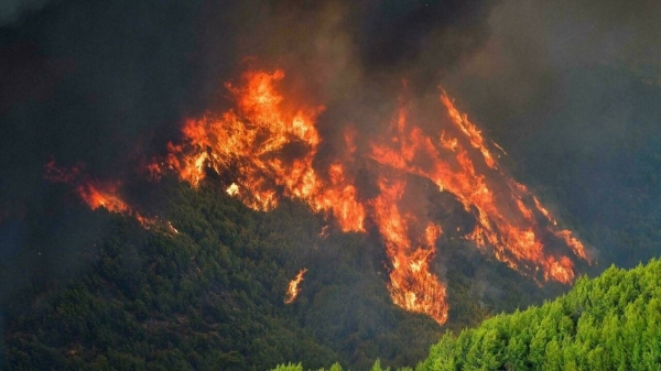 Firefighters continue to battle major fires in Greece, including one that could put the archaeological site of the first ancient Olympic games at risk. — Courtesy photo