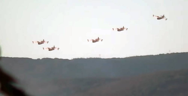 France has mobilized two Canadair-type firefighting planes to help Algeria fight forest fire.