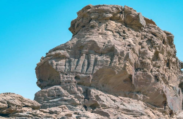 A scientific study by the Saudi Heritage Commission with Saudi and international researchers, has been able to date rock carvings at the 'Camel Site' in Al-Jouf back to the Neolithic period.